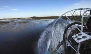 Find nature tours in the Cajun Coast